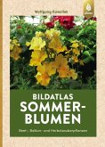 Bildatlas Sommerblumen (eBook, PDF)