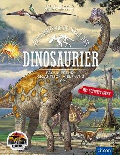 Geheimnisvolle Welt der Dinosaurier - Huwald, Heike