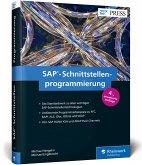 SAP-Schnittstellenprogrammierung