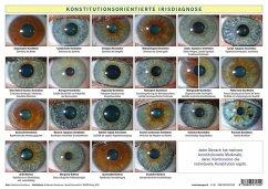 Konstitutionsorientierte Irisdiagnose, Tafel - Garvelmann, Friedemann
