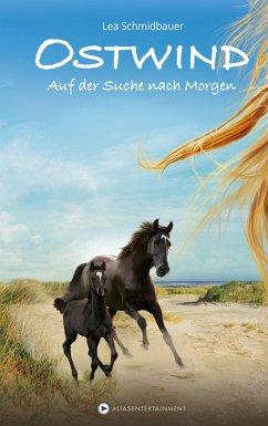 Auf der Suche nach Morgen / Ostwind Bd.4 (Mängelexemplar) - Schmidbauer, Lea