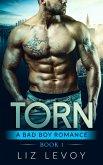 Torn 1 (eBook, ePUB)