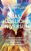 Das hässliche Universum (eBook, ePUB)