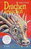 Drachenerwachen (eBook, ePUB)