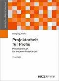 Projektarbeit für Profis (eBook, PDF)
