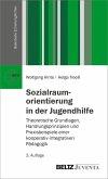 Sozialraumorientierung in der Jugendhilfe (eBook, PDF)
