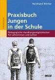 Praxisbuch Jungen in der Schule (eBook, ePUB)