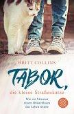 Tabor, die kleine Straßenkatze (eBook, ePUB)