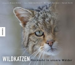 Wildkatzen - Suchant, Rudi; Streif, Sabrina; Veith, Sarah