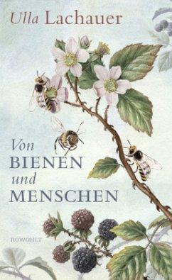 Von Bienen und Menschen - Lachauer, Ulla