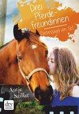 Drei Pferdefreundinnen - Diebesjagd am Set (eBook, ePUB)