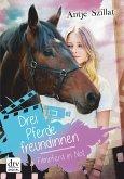 Drei Pferdefreundinnen - Filmpferd in Not (eBook, ePUB)