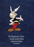 Der Papyrus des Cäsar, Asterix in Italien, Asterix erobert Rom / Asterix Gesamtausgabe Bd.14