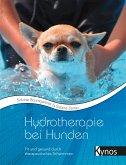 Hydrotherapie bei Hunden