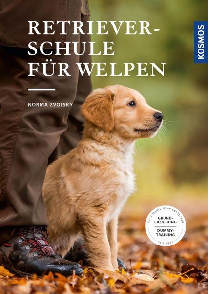 Retrieverschule Fur Welpen Ebook Epub Von Norma Zvolsky Portofrei Bei Bucher De