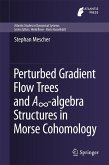 Perturbed Gradient Flow Trees and A8-algebra Structures in Morse Cohomology (eBook, PDF)