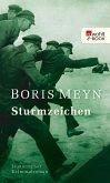 Sturmzeichen (eBook, ePUB)