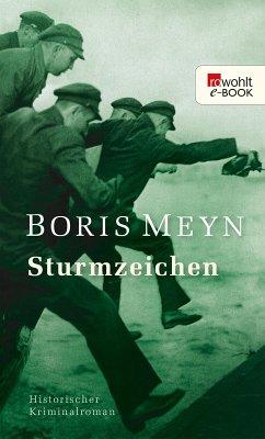 Sturmzeichen (eBook, ePUB) - Meyn, Boris
