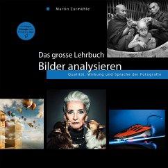 Das grosse Lehrbuch - Bilder analysieren - Zurmühle, Martin