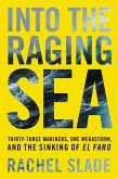 Into the Raging Sea (eBook, ePUB)