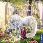 Das magische Wasser / Sternenschweif Bd.46