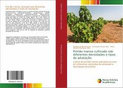 Pinhão manso cultivado sob diferentes densidades e tipos de adubação