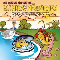 Die kleine Schnecke Monika Häuschen - Warum haben Muscheln Perlen?, 1 Audio-CD - Naumann, Kati