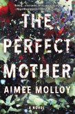 The Perfect Mother (eBook, ePUB)