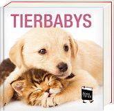 Tierbabys - Book To Go