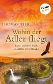 Wohin der Adler fliegt (eBook, ePUB)