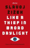 Like A Thief In Broad Daylight (eBook, ePUB)