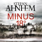 Minus 18 Grad / Fabian Risk Bd.3 (2 Audio-CDs, MP3 Format)