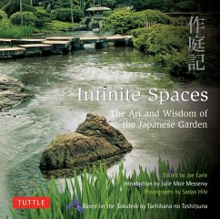 Infinite Spaces (eBook, ePUB)