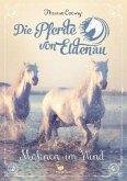 Mähnen im Wind / Die Pferde von Eldenau Bd.1