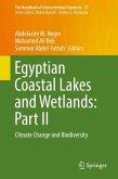Egyptian Coastal Lakes and Wetlands: Part II