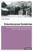 Strategische Experten (eBook, PDF)
