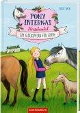 Ein Glückspferd für Emma / Pony-Internat Kirschental Bd.1