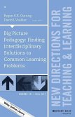 Big Picture Pedagogy (eBook, ePUB)