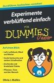 Experimente verblüffend einfach für Dummies Junior (eBook, ePUB)