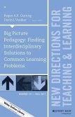 Big Picture Pedagogy (eBook, PDF)