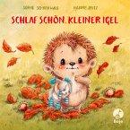 Schlaf schön, kleiner Igel / Mitmachpappen Bd.2