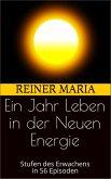 Ein Jahr Leben in der Neuen Energie (eBook, ePUB)