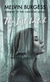 The Lost Witch (eBook, ePUB)
