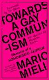 Towards a Gay Communism (eBook, ePUB)