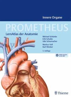 PROMETHEUS Innere Organe - Schünke, Michael;Schulte, Erik;Schumacher, Udo Innere Organe