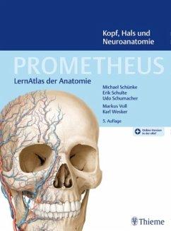 PROMETHEUS Kopf, Hals und Neuroanatomie - Schünke, Michael;Schulte, Erik;Schumacher, Udo Schünke, Michael;Schulte, Erik;Schumacher, Udo