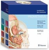 PROMETHEUS LernKarten der Anatomie