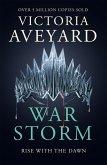 War Storm (eBook, ePUB)
