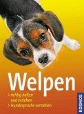 Welpen (Mängelexemplar)