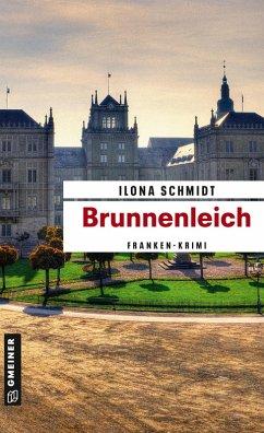 Brunnenleich (eBook, PDF) - Schmidt, Ilona